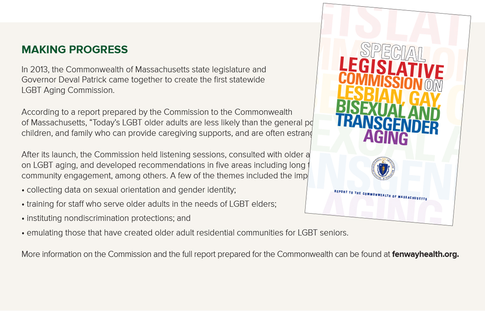 chart on LBGT commission