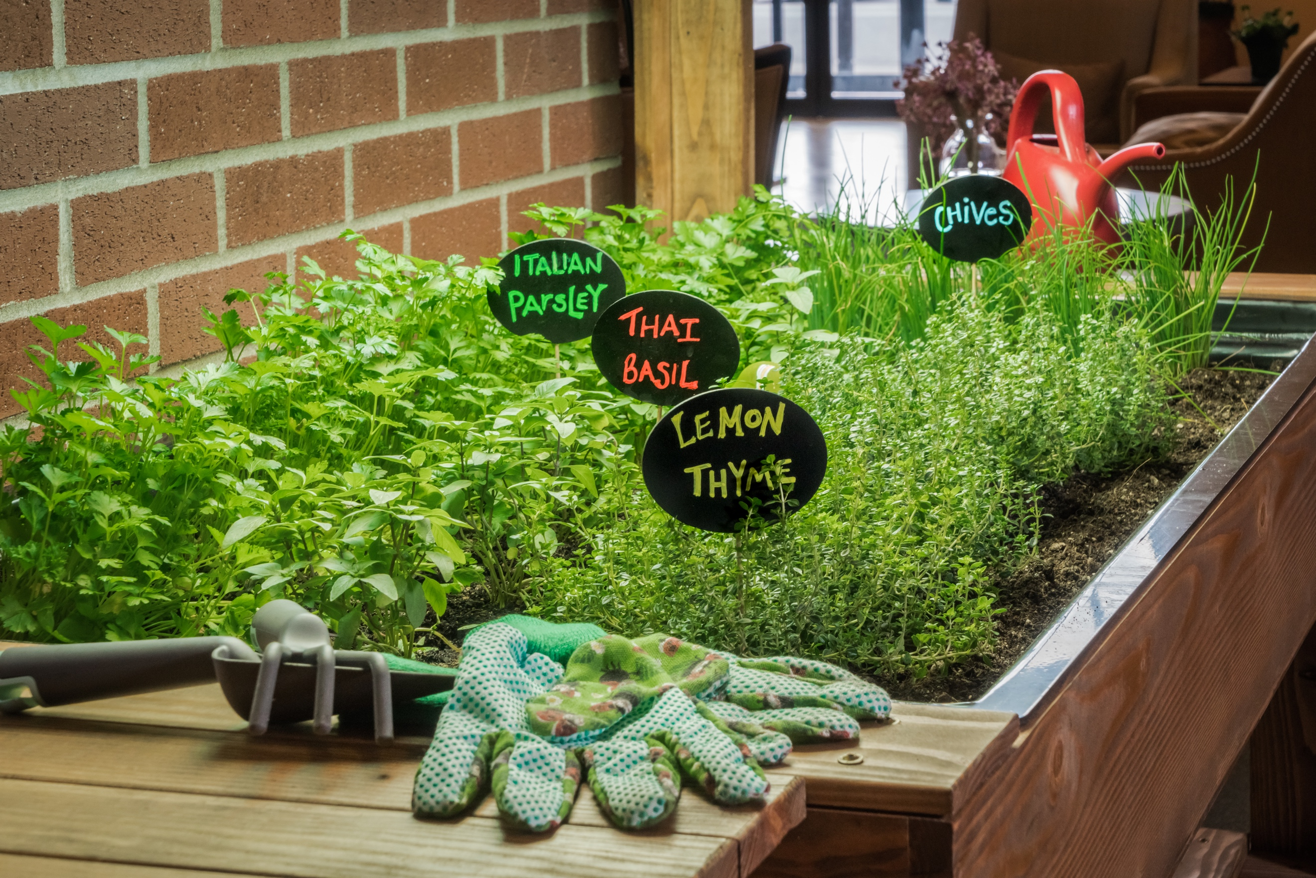 First-of-Its-Kind Herb Garden Program Finds Roots in Merrill