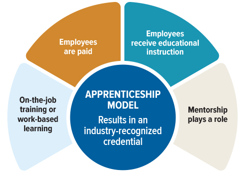 chart showing apprenticeship model